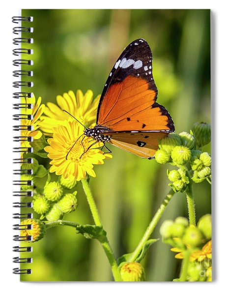 Spiral Notebook featuring the photograph Nature Warm Colors by Arik Baltinester