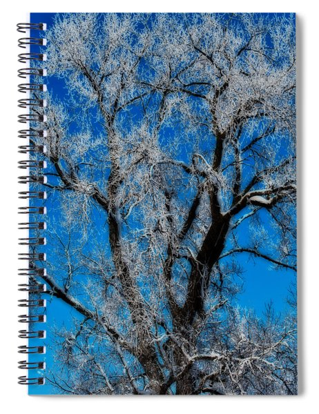 Spiral Notebook featuring the photograph Natures Lace by Edward Peterson