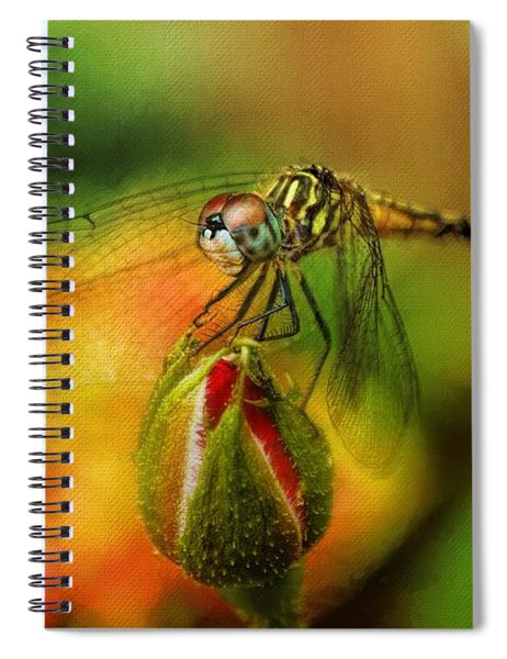 Nature's Little Creatures Spiral Notebook