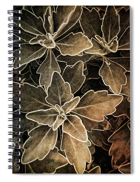 Natures Patterns Spiral Notebook