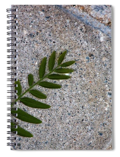 Nature's Trace Spiral Notebook