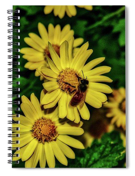 Nectar Gathering Spiral Notebook