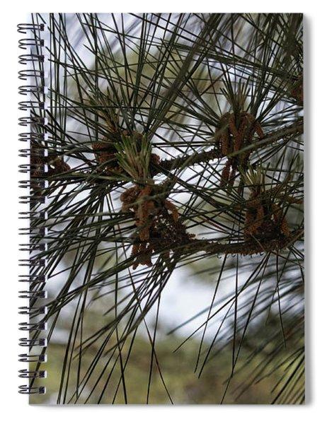 Needles Attached Spiral Notebook