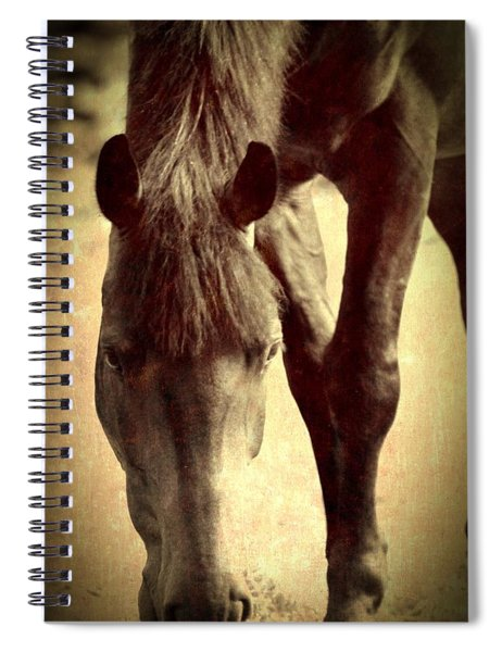 Neigh Spiral Notebook