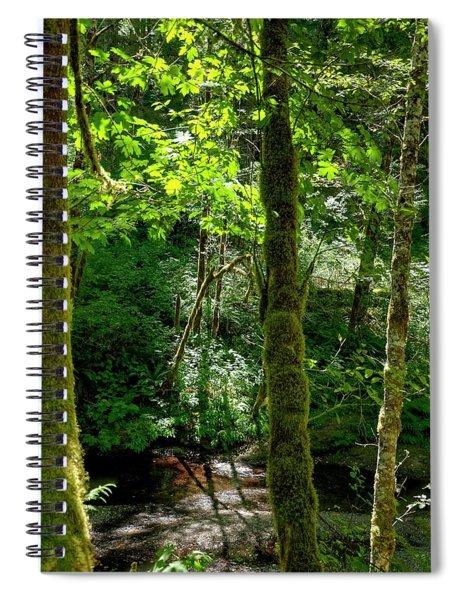 Nestucca River 3039 12x18 Spiral Notebook