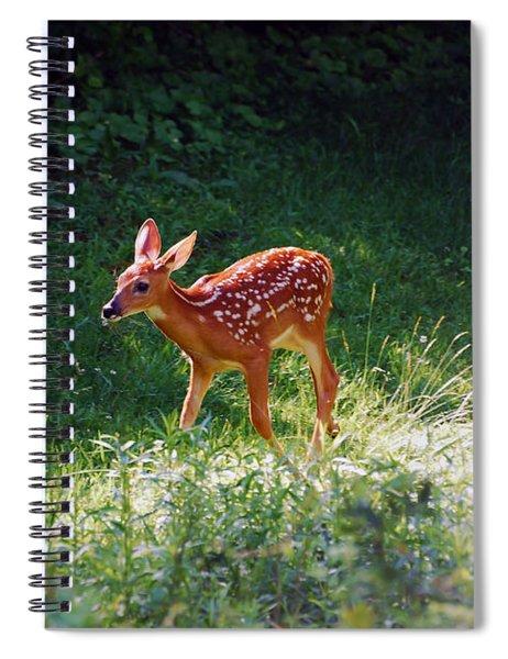 New Backyard Visitor Spiral Notebook