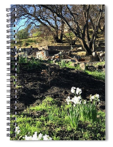 New Growth From Sandra Rosa Fires Spiral Notebook