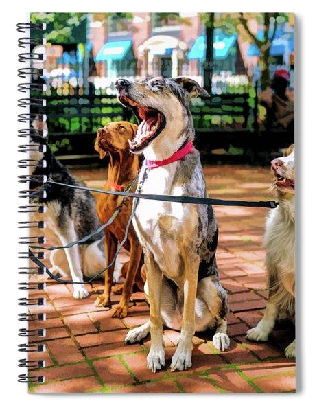 New York City Dog Walking Spiral Notebook