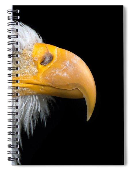 Nictitating Membrane Spiral Notebook