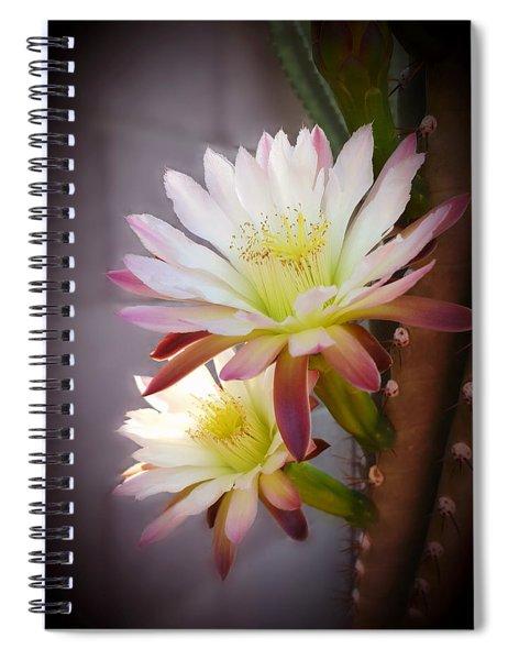 Night Blooming Cereus Spiral Notebook