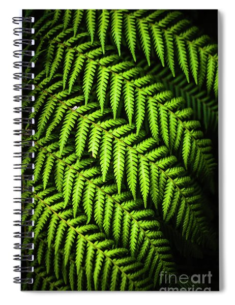 Night Forest Frond Spiral Notebook