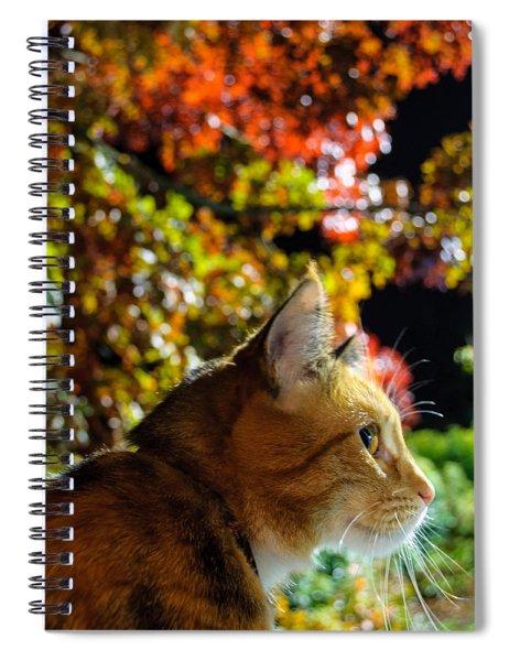 Night Stalker Spiral Notebook