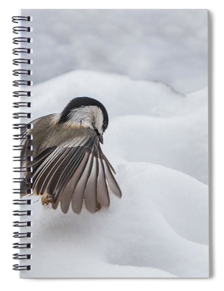 Spiral Notebook featuring the photograph Chickadee - Wings At Work by Patti Deters
