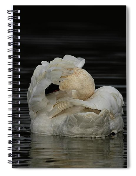 No Pictures Please Spiral Notebook