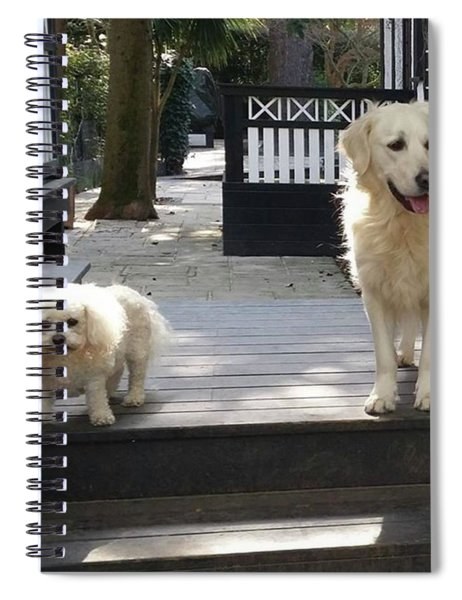 Non Identical Sisters Spiral Notebook