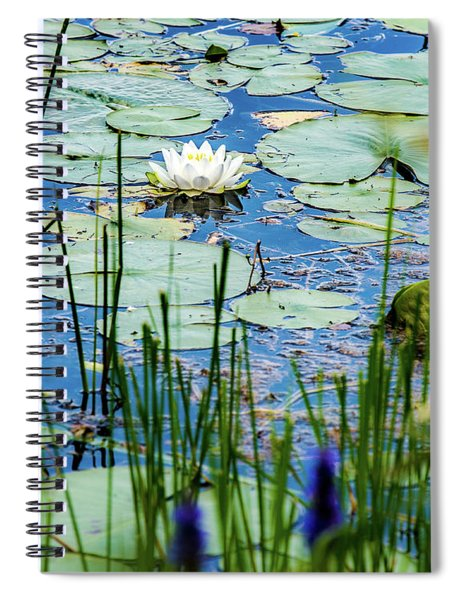 North American White Water Lily Spiral Notebook