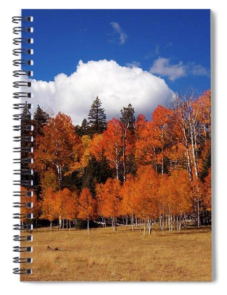 North Rim Autumn Spiral Notebook