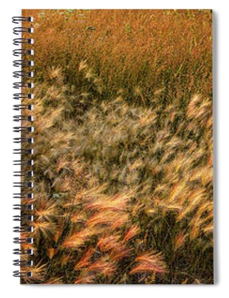 Northern Summer Spiral Notebook