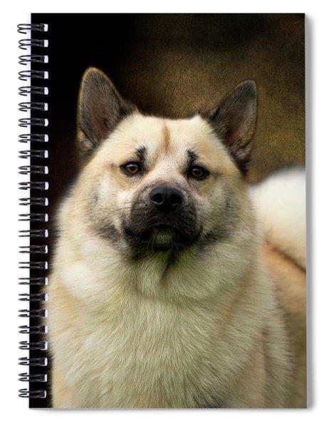 Norwegian Buhund Spiral Notebook