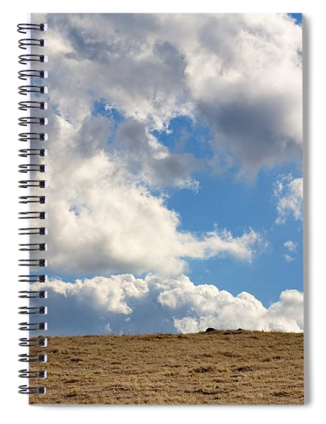 Not A Cow In The Sky Spiral Notebook