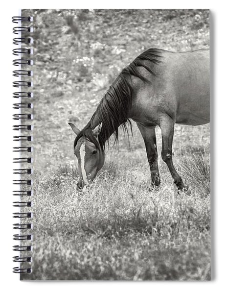 Not All Those Who Wander Are Lost Spiral Notebook