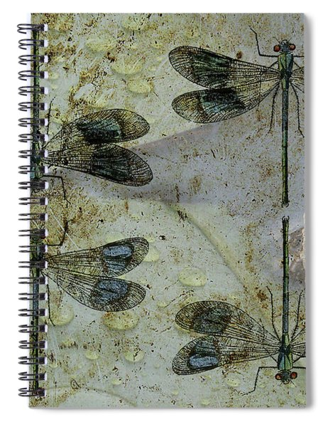 Nothing But A Rumor II Spiral Notebook