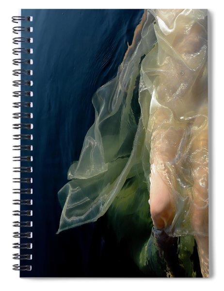 Damselfly Spiral Notebook