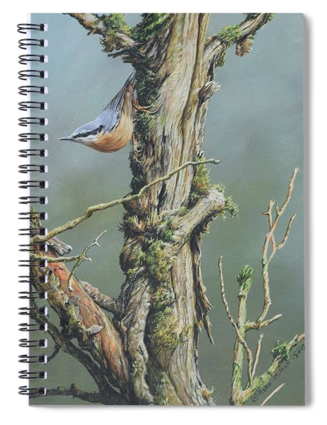 Spiral Notebook featuring the painting Nuthatch by Alan M Hunt