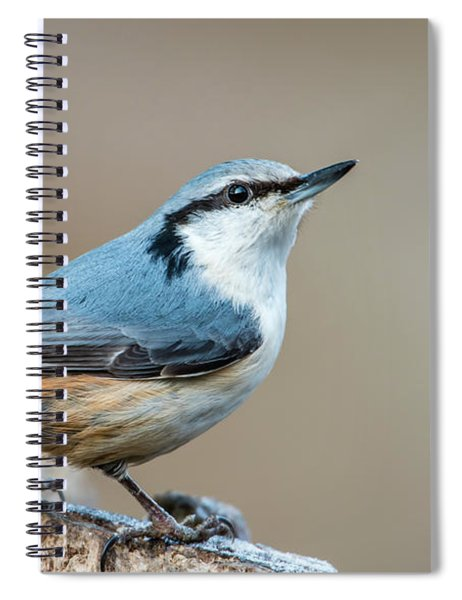 Nuthatch's Pose Spiral Notebook