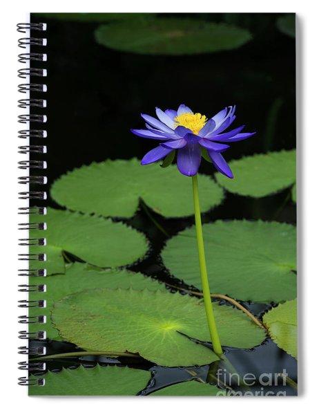 Nymphaea Kews Stowaway Spiral Notebook