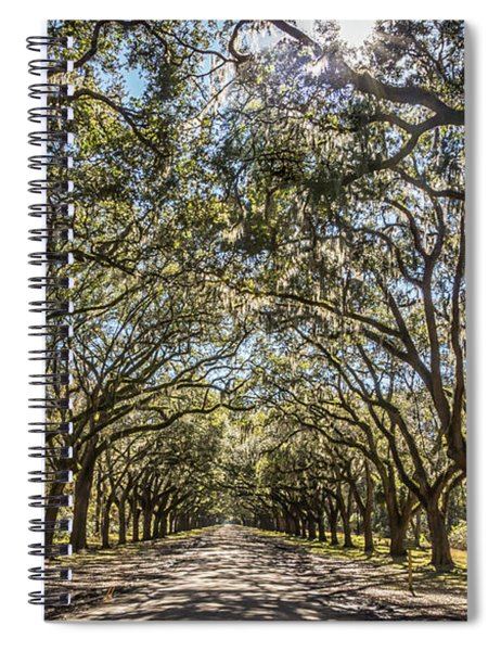 Oak Tree Tunnel #3 Spiral Notebook