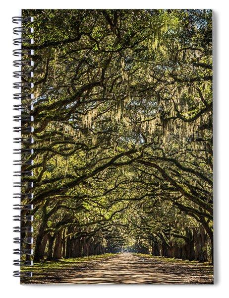 Oak Tree Tunnel Spiral Notebook