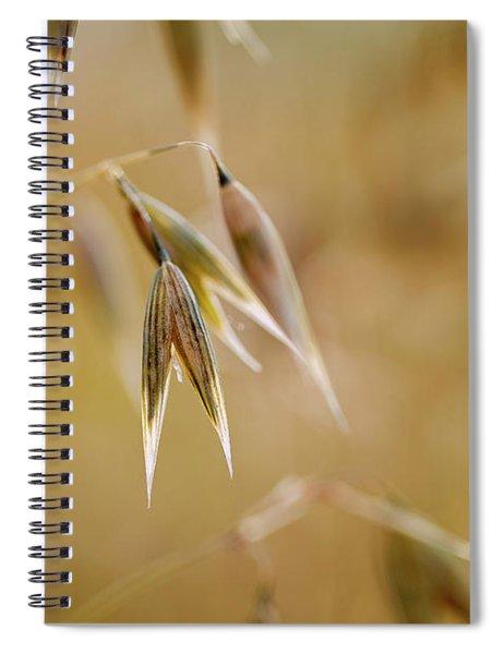 Summer Oat Spiral Notebook