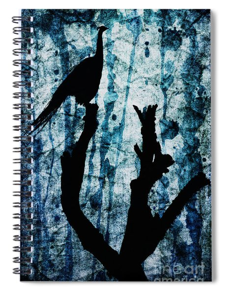 Obsidian Realm Spiral Notebook