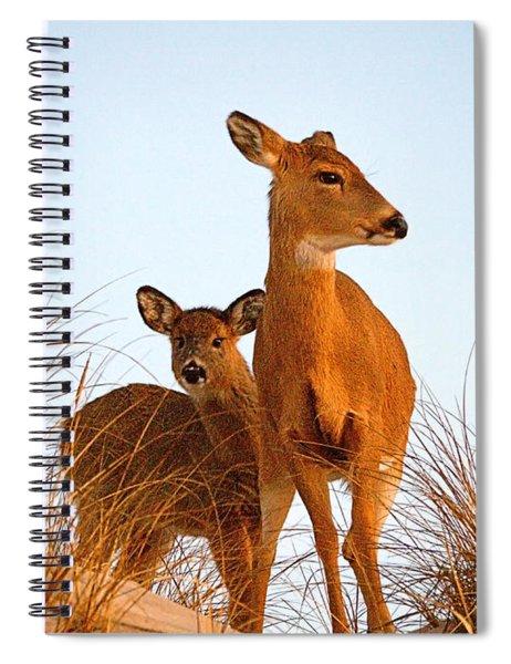 Ocean Deer Spiral Notebook