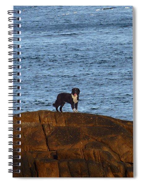 Ocean Dog Spiral Notebook