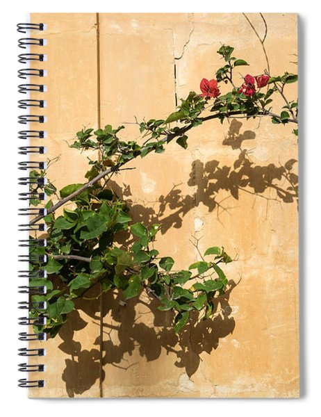 Of Light And Shadow - Bougainvillea On A Timeworn Plaster Wall Spiral Notebook