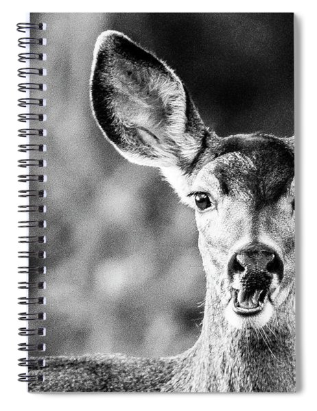 Oh, Deer, Black And White Spiral Notebook