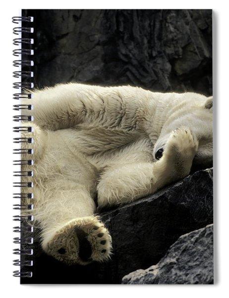 Oh What A Night Polar Bear Spiral Notebook