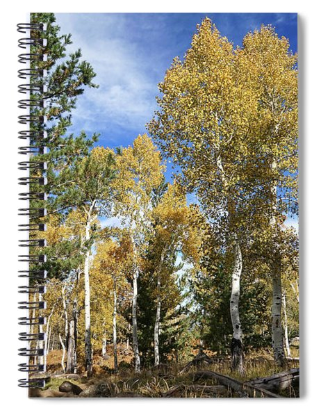 Old And New Growth Spiral Notebook