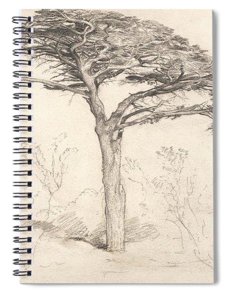 Old Cedar Tree In Botanic Garden, Chelsea Spiral Notebook