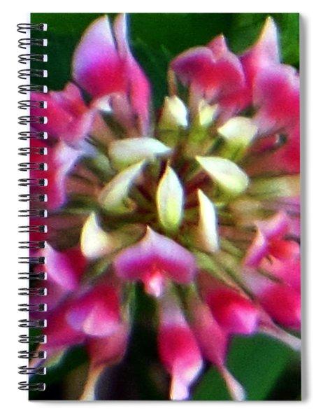 Old Rose Explosive Wildflower Spiral Notebook