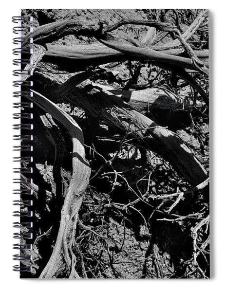 Old Sagebrush Spiral Notebook