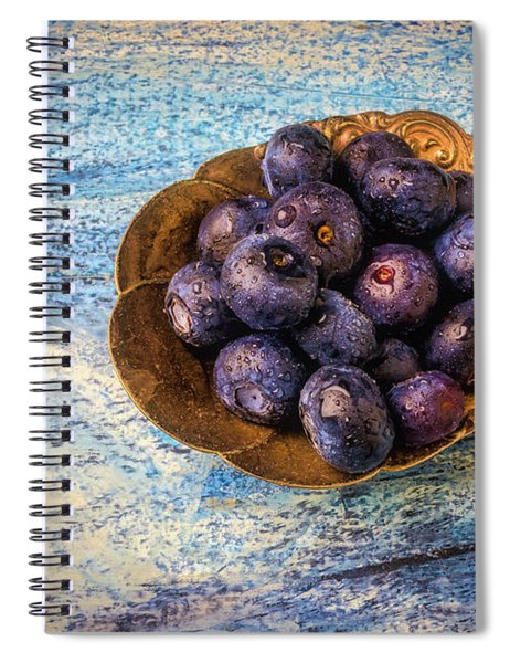 Old Spoon Full Of Blueberries Spiral Notebook