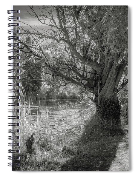 Old Willow Spiral Notebook