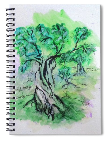 Olive Tree Grove Spiral Notebook