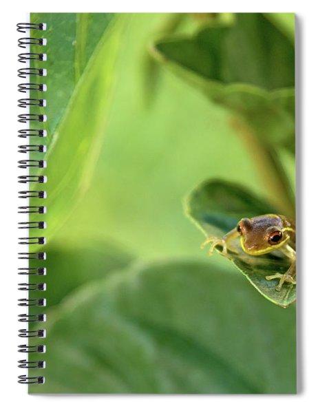 On Edge Spiral Notebook