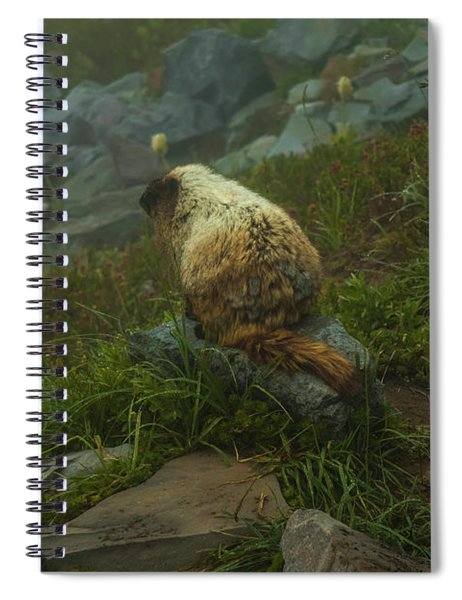 On Lookout Spiral Notebook