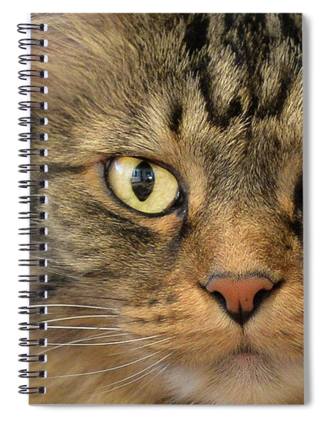 On The Prowl Spiral Notebook