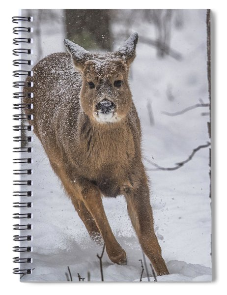 On The Run Spiral Notebook